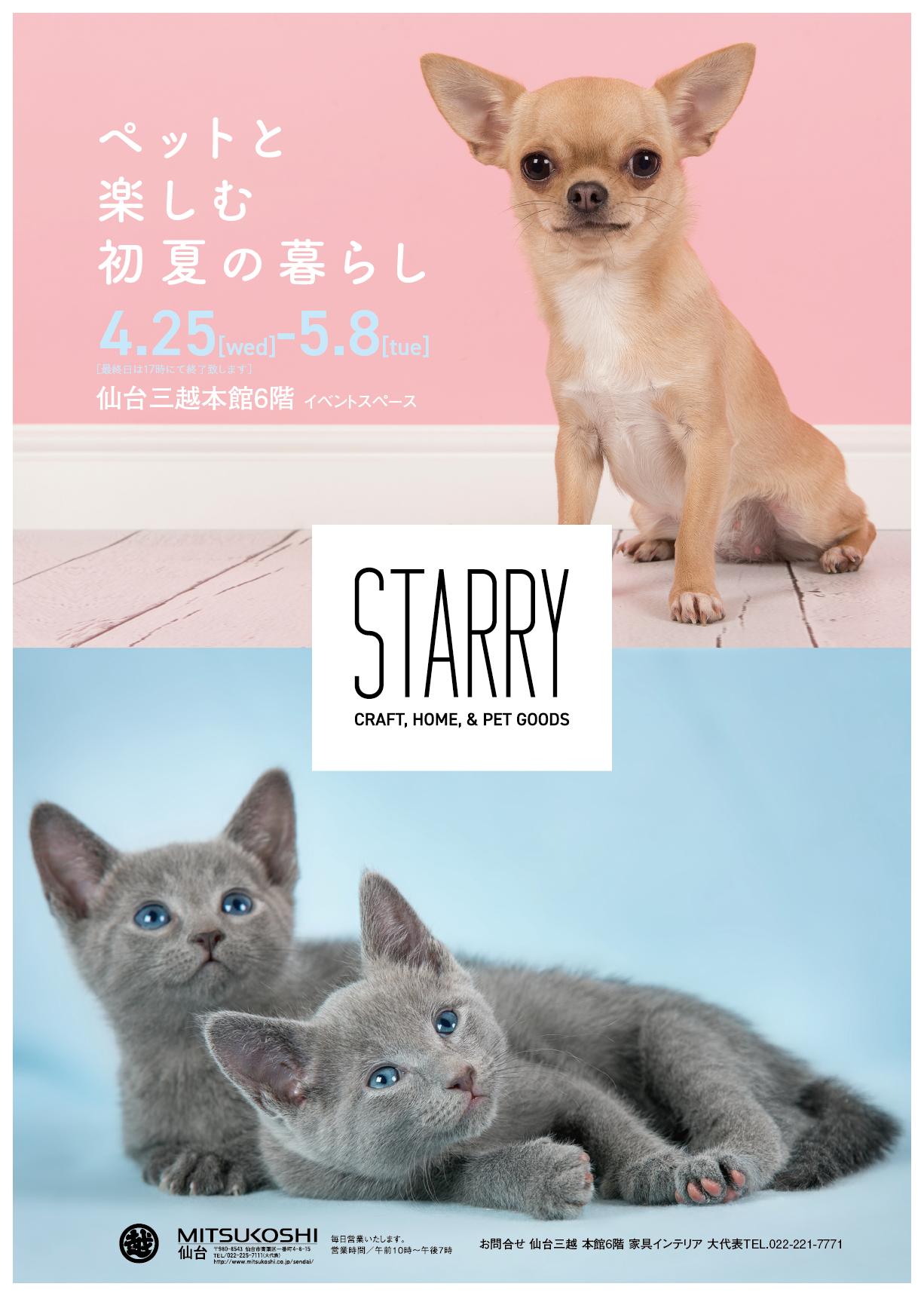 STARRY,ペット