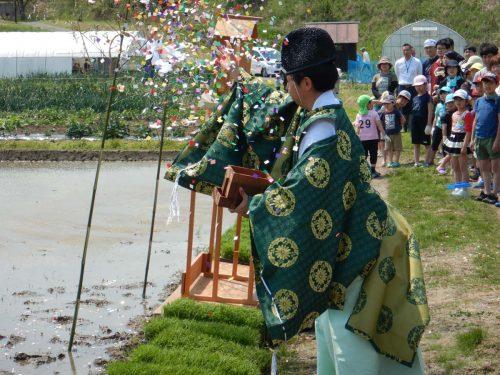 田植えの祈祷の写真