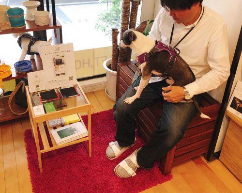 スターリー店内の休憩スペースでくつろぐアスター(犬)の写真