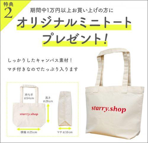 1万円以上お買い上げでアニバーサリーミニトートプレゼント