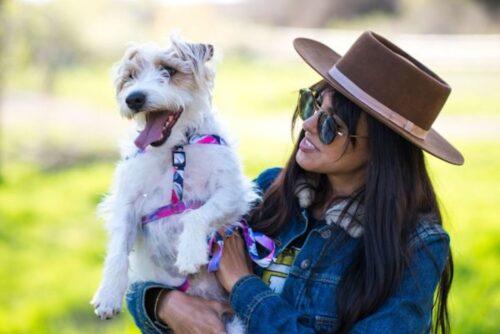 ウルフギャングのハーネスを身につけた犬とその飼い主の写真